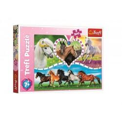 Puzzle koně (200 dílků)