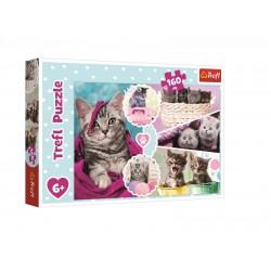 Puzzle kočičky (160 dílků)